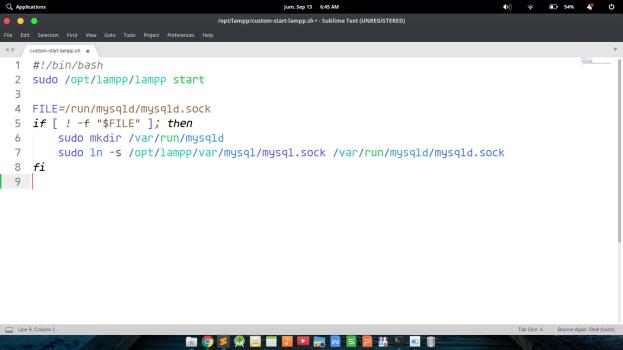 Membuat Bash Script Sederhana untuk Kebutuhan Menjalankan Aplikasi Lazarus di GNU/Linux